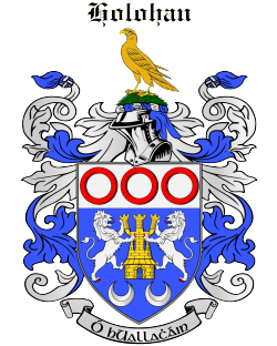 HOLOHAN family crest